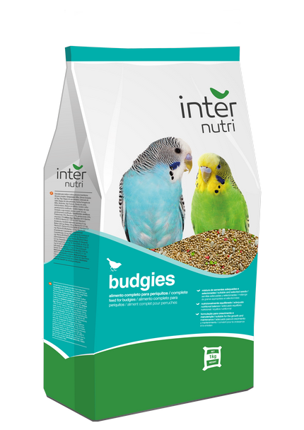 Internutri Budgies
