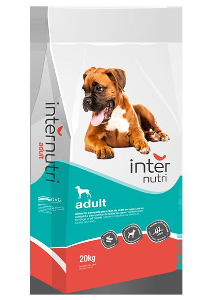 Internutri Adult