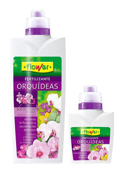 Flower Orquídeas